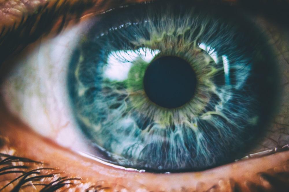 closeup picture of eyeball